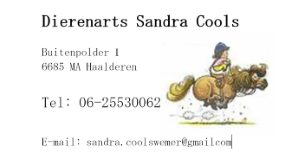 Dierenarts Sandra Cools 300×168